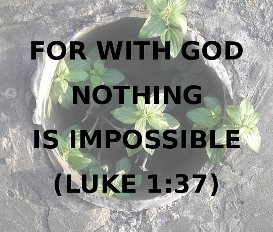 For With God Nothing is Impossible